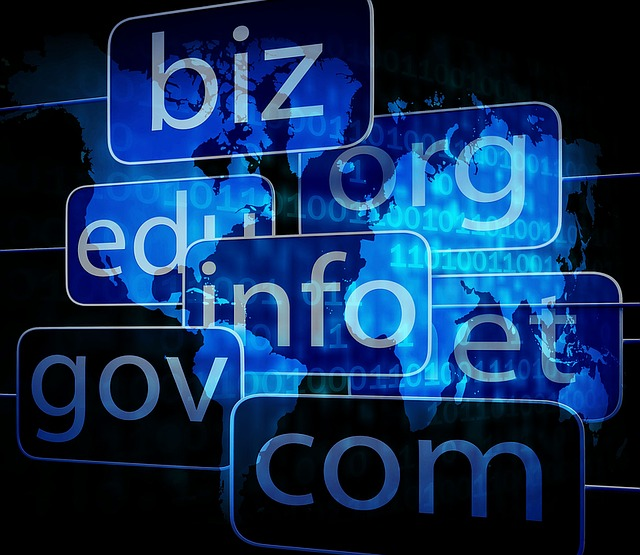 Invest in Domain Names